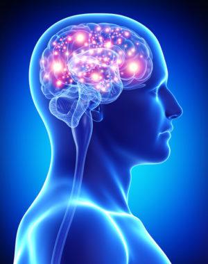 3d art illustration of male active brain